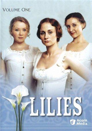 Лилии - Lilies