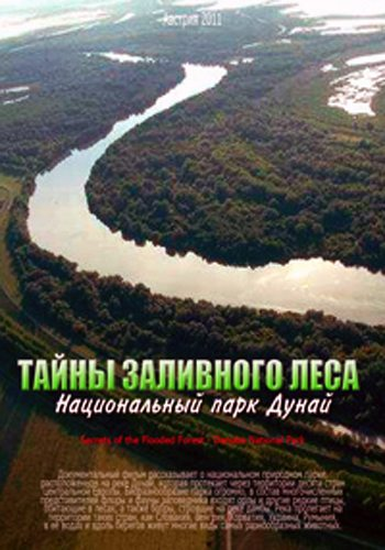 ����� ��������� ���� � ������������ ���� ����� - Secrets of the Flooded Forest - Danube National Park