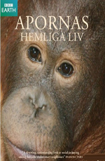 BBC.Тайная жизнь приматов - BBC. The Secret Life of Primates