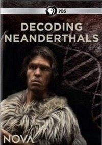 PBS: ����� �������������� - PBS- Decoding the Neanderthals