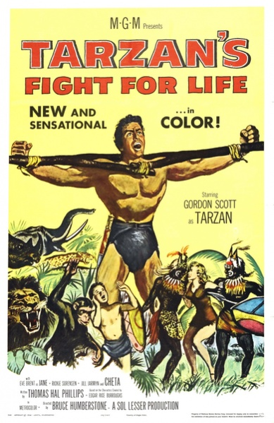 ����������� ������� ������� - Tarzan's Fight for Life
