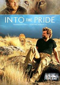 Жизнь в стае - Into the Pride
