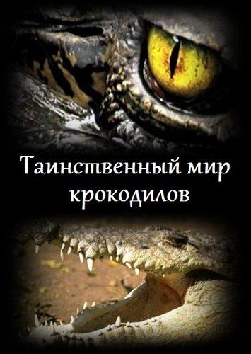 Таинственный мир крокодилов - The secret world of crocodiles