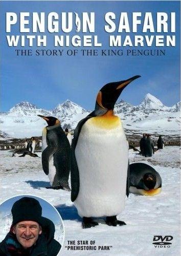 Пингвинье сафари - Penguin Safar