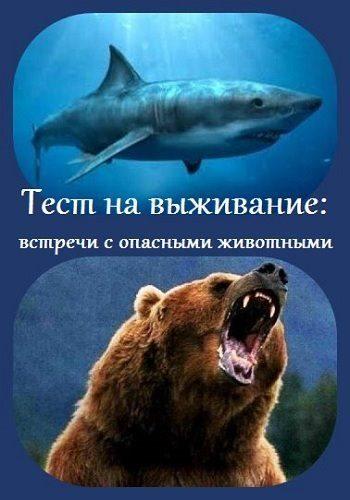 Тест на выживание. Встреча с опасными животными - Survival Test. Dangerous Animal Encounters