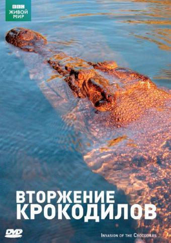 BBC: Вторжение крокодилов - BBC- Invasion Of The Crocodiles