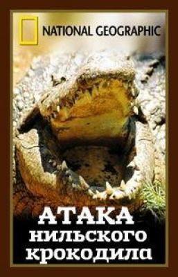 Атака нильского крокодила - Africa's Croc Attack