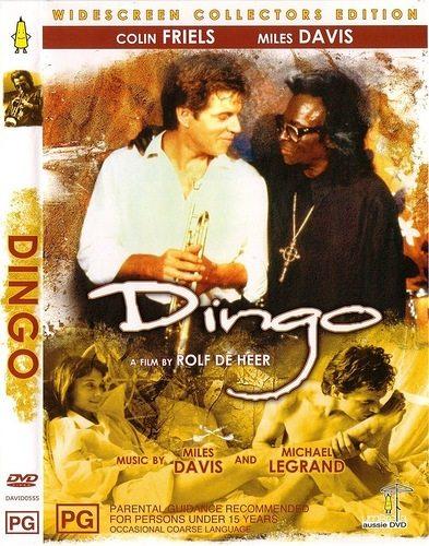 Динго - Dingo