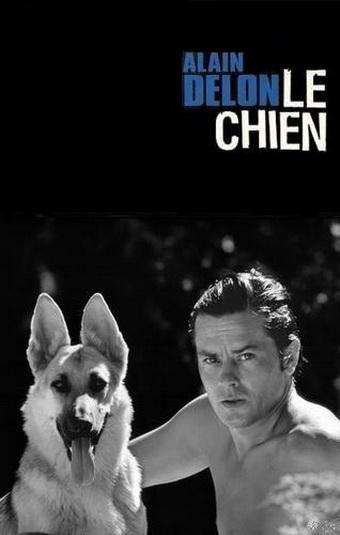 Пёс - Le Chien