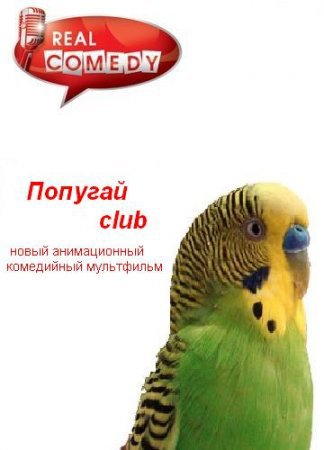 Попугай Club - Popugai Club