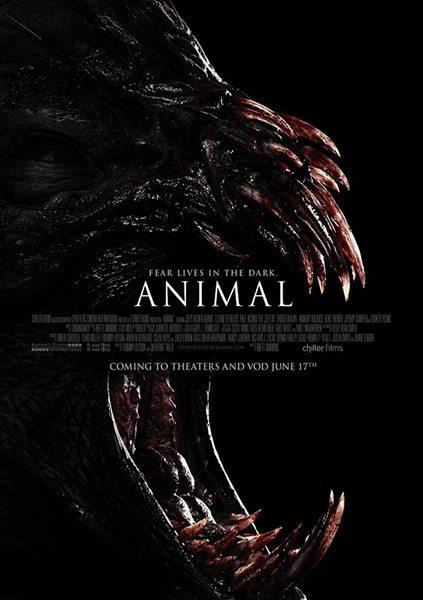 Животное - Animal