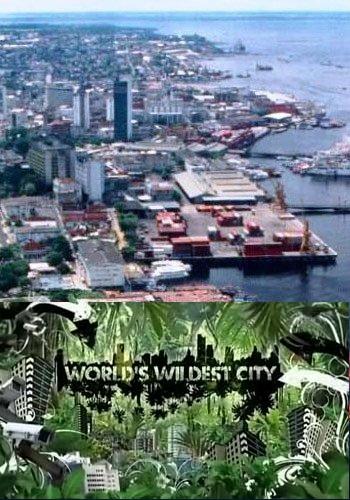 Animal Planet: Неизведанные города - Worlds wildes city