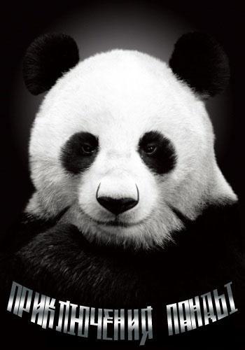 Приключения панды - Panda Andventure