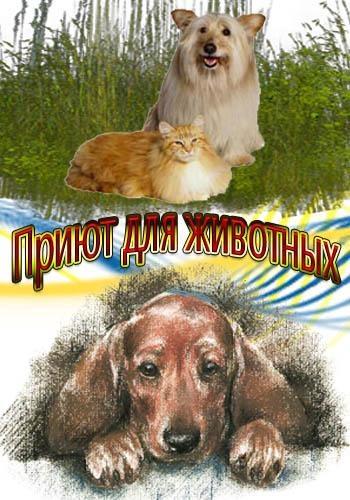Приют для животных - Giveme shelter