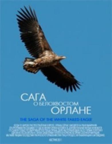 Сага о белохвостом орлане - The Saga of the White-tailed Eagle