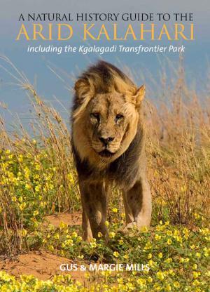 Дикая Калахари - Wild Kalahari