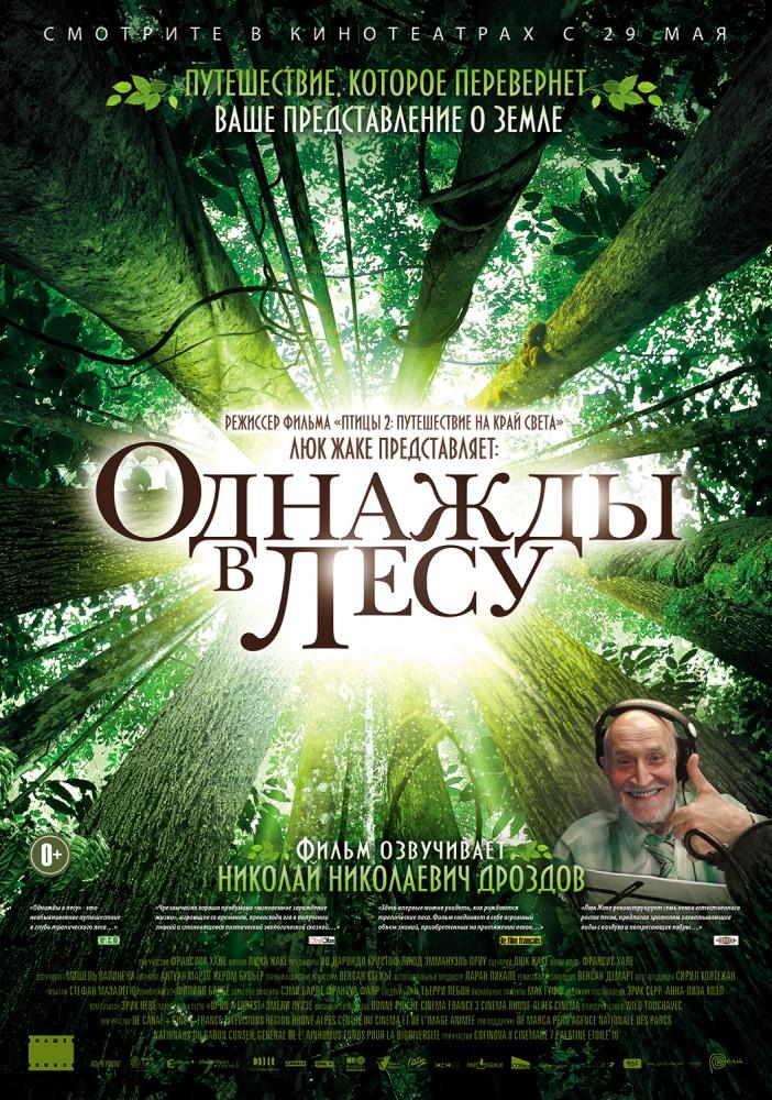 Однажды в лесу - Once in the Forest