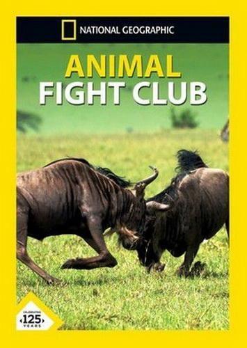 Бойцовский клуб для животных - Animal Fight Club