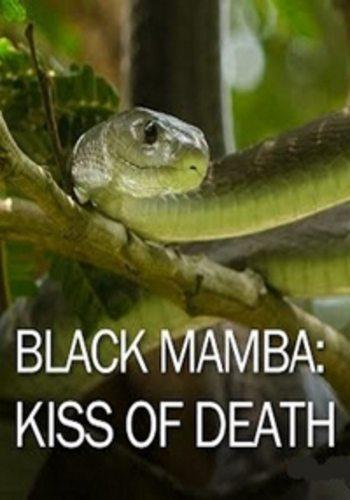 Черная мамба: поцелуй смерти - Black Mamba- kiss of death