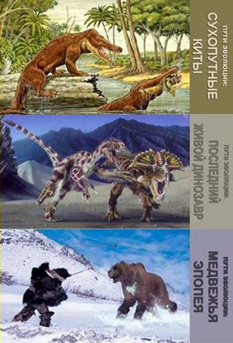 Пути эволюции - Evolutions