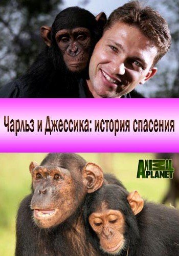 ������ � �������� - ������� �������� - Charles and Jessica. A Chimp Tale
