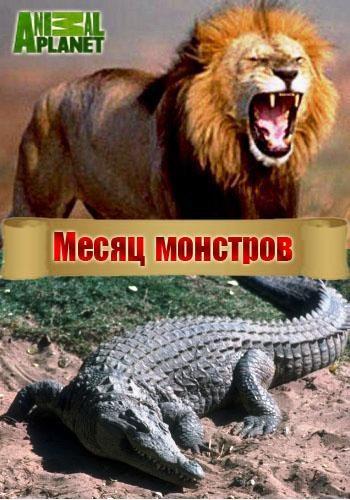 Месяц монстров - Month of monsters