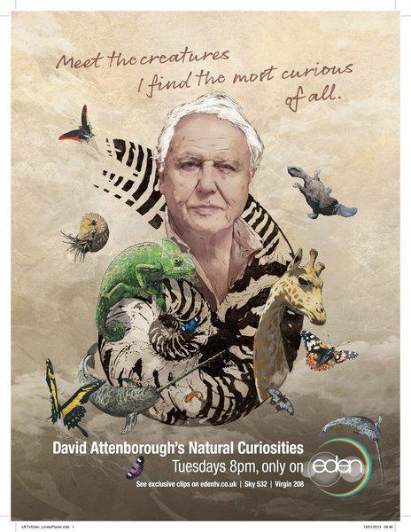 Девид Аттенборо. Курьезы природного мира - David Attenborough's Natural Curiosities
