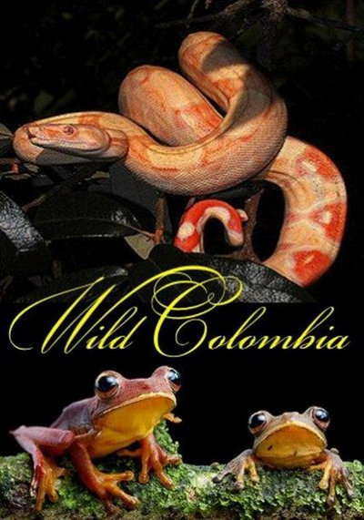 ����� �������� - Wild Colombia