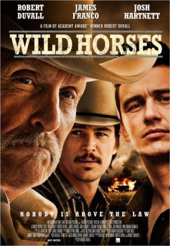 Дикие лошади - Wild Horses