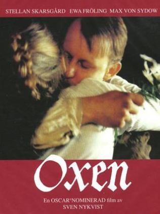 Бык - Oxen