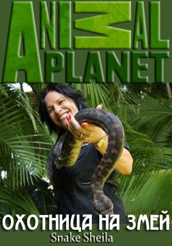 Animal Planet. Охотница на змей - Snake Sheila