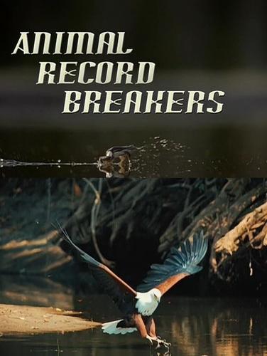Рекордсмены из мира животных - Animal Record Breakers