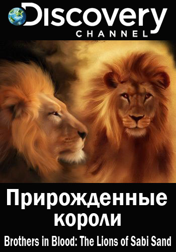 Прирожденные короли - Brothers in Blood- The Lions of Sabi Sand