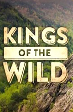 Discovery: Дикая кухня - Discovery- Kings of the Wild