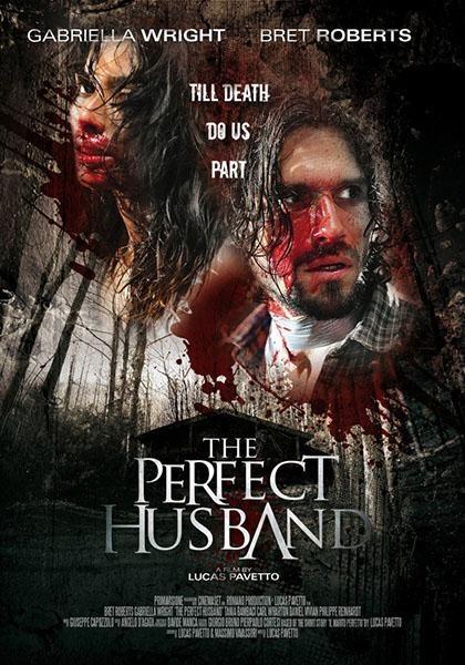Идеальный муж - The Perfect Husband