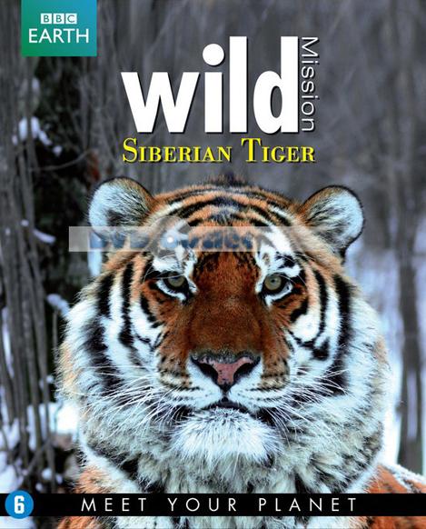 По следам уссурийского тигра - Operation Snow Tiger