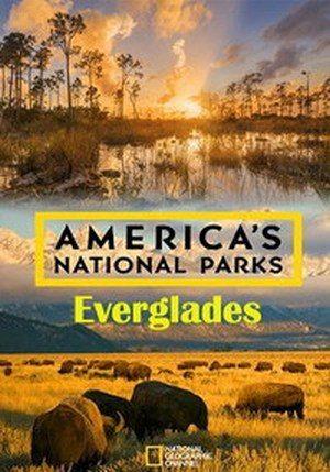 Национальные парки Америки. Эверглейдс - America's National Parks. Everglades