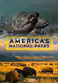 Национальные парки Америки. Арктические врата - America's National Parks. Gates of the Arctic