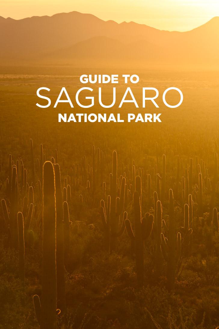 Национальные парки Америки. Сагуаро - America's National Parks. Saguaro
