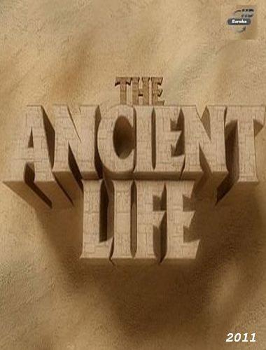 Тайны древних цивилизаций - The Ancient Life