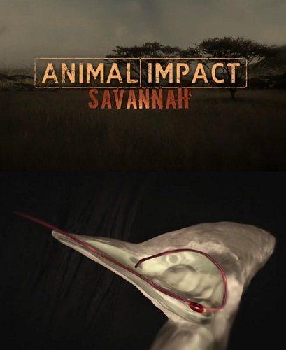 Природная инженерия: выживание в саванне - Animal Impact- Savannah