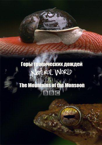 Мир природы - Горы тропических дождей - Natural World - The Mountains of the Monsoon