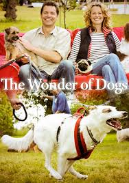 ������ ���� �������� - The Wonder of Dogs