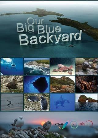 Океан на заднем дворе - Our Big Blue Backyard