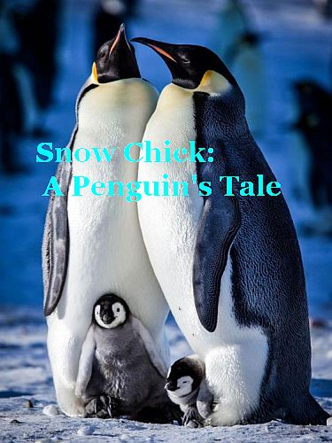 Заснеженный птенец или История одного пингвина - BBC. Snow Chick - A Penguin's Tale