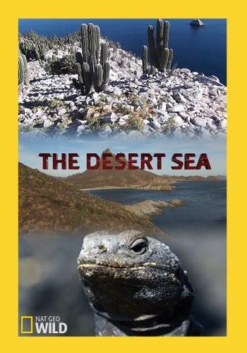 Пустынное море - The Desert Sea