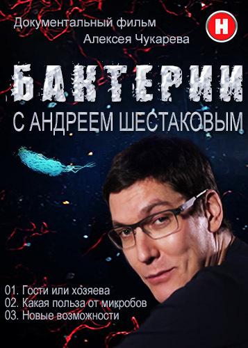 Бактерии с Андреем Шестаковым