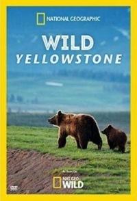 Дикий Йеллоустоун - Wild Yellowstone