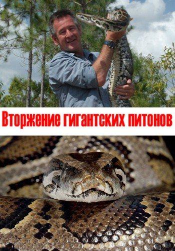 Вторжение гигантских питонов - Invasion Of The Giant Pythons