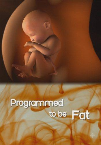 Природа вещей: Курс на ожирение? - The Nature of Things- Programmed to Be Fat